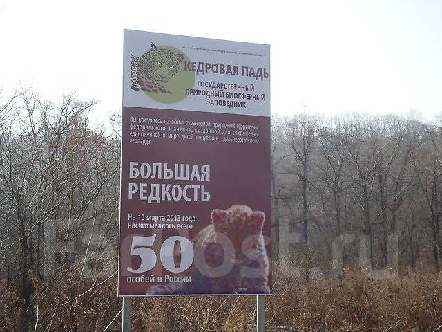 """""""Земля леопарда"""" + """"Теплое море"""" 31 марта 2018"""