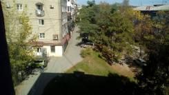 1-комнатная, улица Молодежная 11. Заводская ( ГУМ), агентство, 34 кв.м. Вид из окна днем