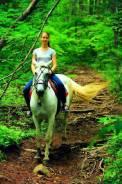Конные прогулки в районе Ботанического сада. От 500 р.