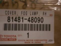 Очки на противотуманки LEXUS RX350, GGL15, 8148148090, 4190000205