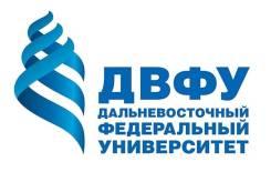 Довузовская подготовка абитуриентов в ДВФУ: история и обществознание