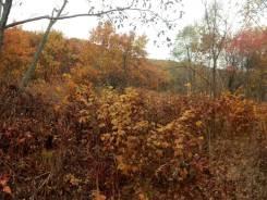Продам земельный участок в р-не Сидоренко. 1 178 кв.м., собственность, от агентства недвижимости (посредник). Фото участка