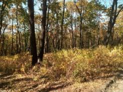 Продам земельный участок в Южном микрорайоне. 1 660 кв.м., аренда, от агентства недвижимости (посредник). Фото участка