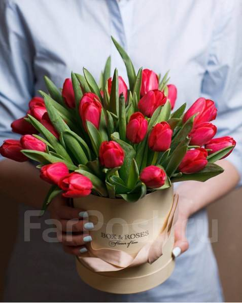 Продавец-флорист. ИП Ким А. В. Улица Ленинградская 28и