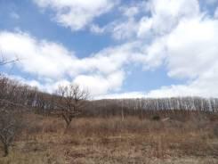 Участок в с. Голубовка, рядом с Находкой. 2 500 кв.м., собственность, электричество, от агентства недвижимости (посредник). Фото участка