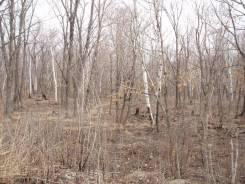 Земельный участок г. Владивосток, ул. Опорная, 16. 31 000 кв.м., собственность, от агентства недвижимости (посредник). Фото участка
