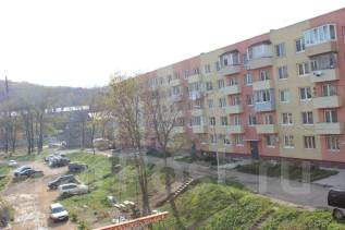 1-комнатная, улица Подножье 32. о. Русский, агентство, 33 кв.м. Дом снаружи