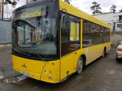 МАЗ 206. Автобус маз, 5 800 куб. см., 72 места