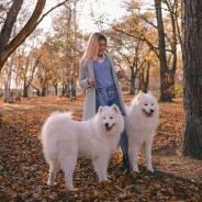 Аренда собак для фотосессий