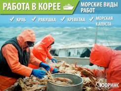 Морские виды Работ в Ю-Кореи! Выезд 19.12 и 26.12 Паром 21 000 руб.