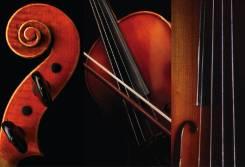 Музыкальное сопровождение мероприятий, Ансамбль скрипачей, Скрипка