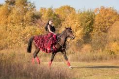 Активный отдых на лошадях: прогулки и тренировки.