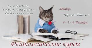 Фелинологические курсы. 4, 5, 6 декабря.