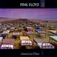 PINK Floyd - A Momentary Lapse of Reason [Vinyl LP]