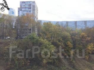 1-комнатная, улица Луговая 78. Баляева, проверенное агентство, 41 кв.м. Вид из окна днём