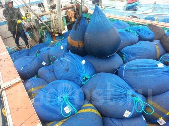 Морские виды Работ в Ю-Кореи! Зарплата от 100 000 руб в месяц