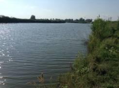 Зарыбленные пруды. 500 000 кв.м., собственность, электричество, вода, от частного лица (собственник)