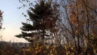 Продам Земельный участок на Садгороде (Анютины дачи). 2 000кв.м., собственность, электричество, вода, от частного лица (собственник)