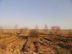 """Земельный участок в с/т """"Ольха"""", участок № 409, 1200 кв. м. 1 200 кв.м., собственность, от агентства недвижимости (посредник). Фото участка"""