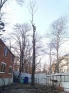Обрезка и пилка деревьев любой сложности! Покос травы!