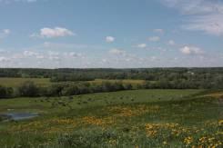 Предложение от собственника! Продается земельный участок площадью 6 Га. 60 000 кв.м., от агентства недвижимости (посредник)