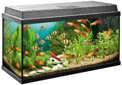 Большой аквариум бу