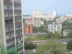 2-комнатная, проспект Партизанский 28а. Центр, агентство, 51 кв.м. Вид из окна днём