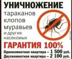 Нет тараканов и грызунов