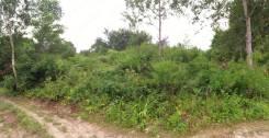 """Продаётся земельный участок в снт """"Тор"""". 1 000 кв.м., собственность, электричество, от агентства недвижимости (посредник). Фото участка"""