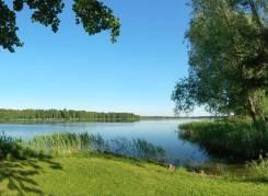 Отличный большой участок сельхоз назначения 17 га. собственность, электричество, вода, от частного лица (собственник)