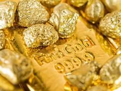Ищю инвестора в золотодобычу