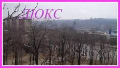 Комната, улица Муравьева-Амурского 7/9. Гайдамак, агентство, 16 кв.м. Вид из окна днем