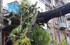 Экстренное удаление поврежденных, упавших, аварийных деревьев!