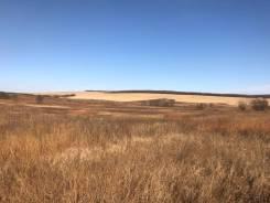 Срочно! Земля сельхозназначения Григорьевка 31 га. 312 090 кв.м., аренда, от частного лица (собственник). Фото участка