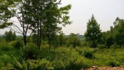 Продаю живописный участок 10 сот рядом с Глобусом за 350 000 р. 1 000 кв.м., собственность, от агентства недвижимости (посредник)