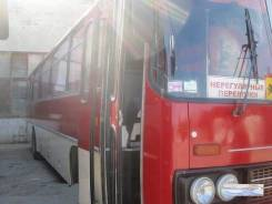Ikarus 256. Автобус Икарус 256 повышенной комфортности 47 мест, отличное состояние, 47 мест