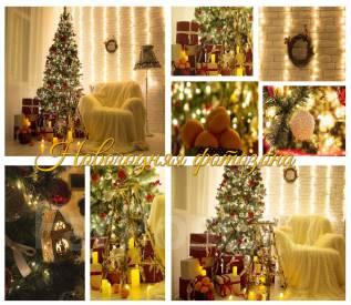 """Фотостудия """"Celebration"""" Новогодние фотозоны"""