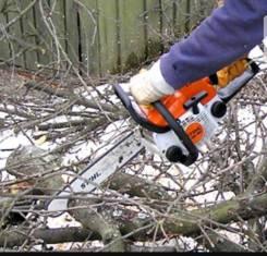 Пилка деревьев, покос травы От 1000 рублей.