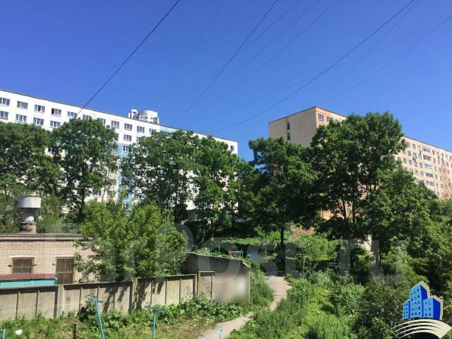 Гостинка, улица Некрасовская 50. Некрасовская, 24 кв.м. Вид из окна днем