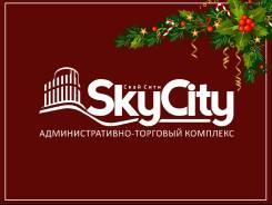 Новогодняя «SKY*Акция»: месяц скидок на площади — от 40 до 100 кв. м. 40 кв.м., улица Алеутская 45, р-н Центр