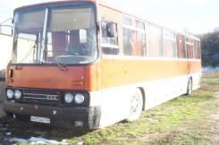 Ikarus. Продаётся автобус Икарус, 49 мест