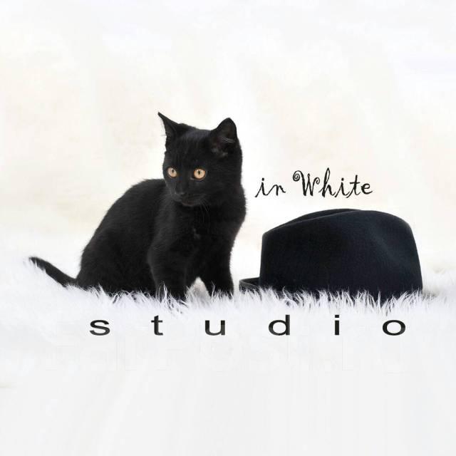 Фотосессии от 800р в Фотостудии Studio IN White