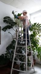 Профессиональный садовник