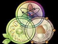 Химия, биология, английский. 5-11 классы