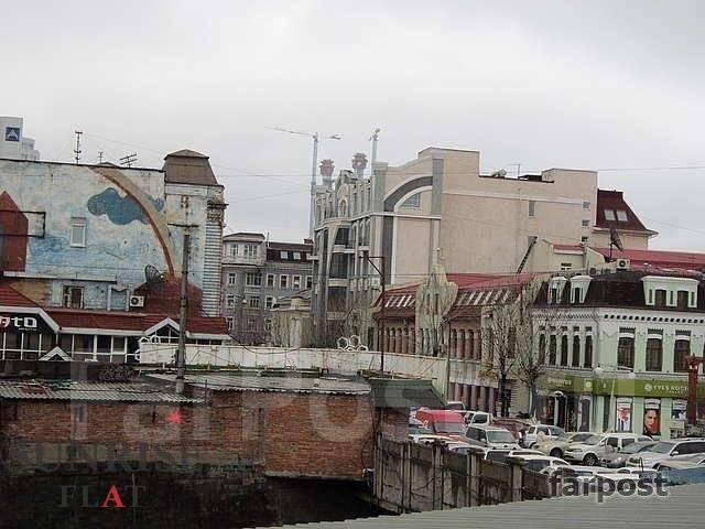 3-комнатная, улица Адмирала Фокина 19. Центр, 65 кв.м. Вид из окна днем