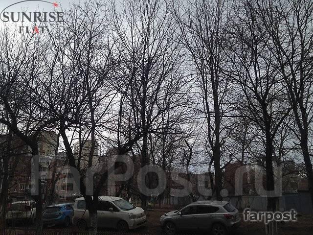 2-комнатная, проспект Острякова 3. Первая речка, 44кв.м. Вид из окна днем