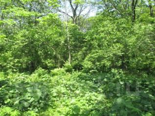 Продам земельный участок в Безверхово, Хасанском районе,30 соток, собств. 3 000 кв.м., собственность, от агентства недвижимости (посредник)