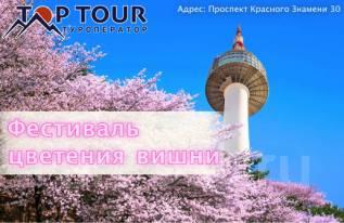 Южная Корея. Сеул. Экскурсионный тур. Фестиваль цветения вишни в Сеуле