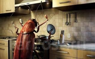 Уничтожение насекомых, муравьи, клопы, тараканы, блоха, крыса 24/7