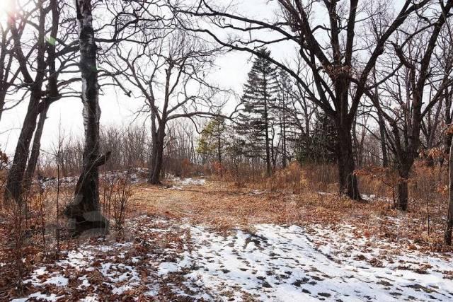 Продам под ИЖС отличный земельный участок 9475 кв. м. на Садгороде. 9 475 кв.м., аренда, от частного лица (собственник). Фото участка